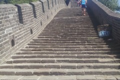 Some of the 5,164 steps